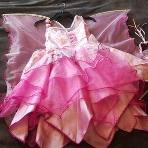 Fairy/Princess Costume
